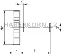Rýhovaný šroub plochý DIN 653  - 3